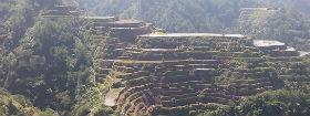 טרק לכפר האפאו ונקודת תצפית בבנאווי
